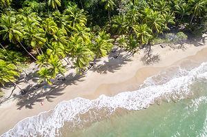 Dominica_BasvanOort-8.jpg