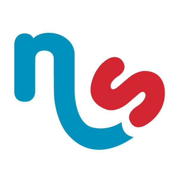 NSG-Logo-Design-Favicon.jpg