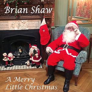 12x12 A Merry Little Christmas.jpg