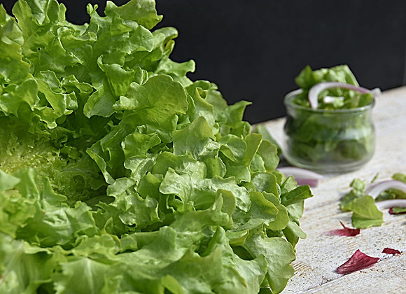 Salade - Pièce - 40km