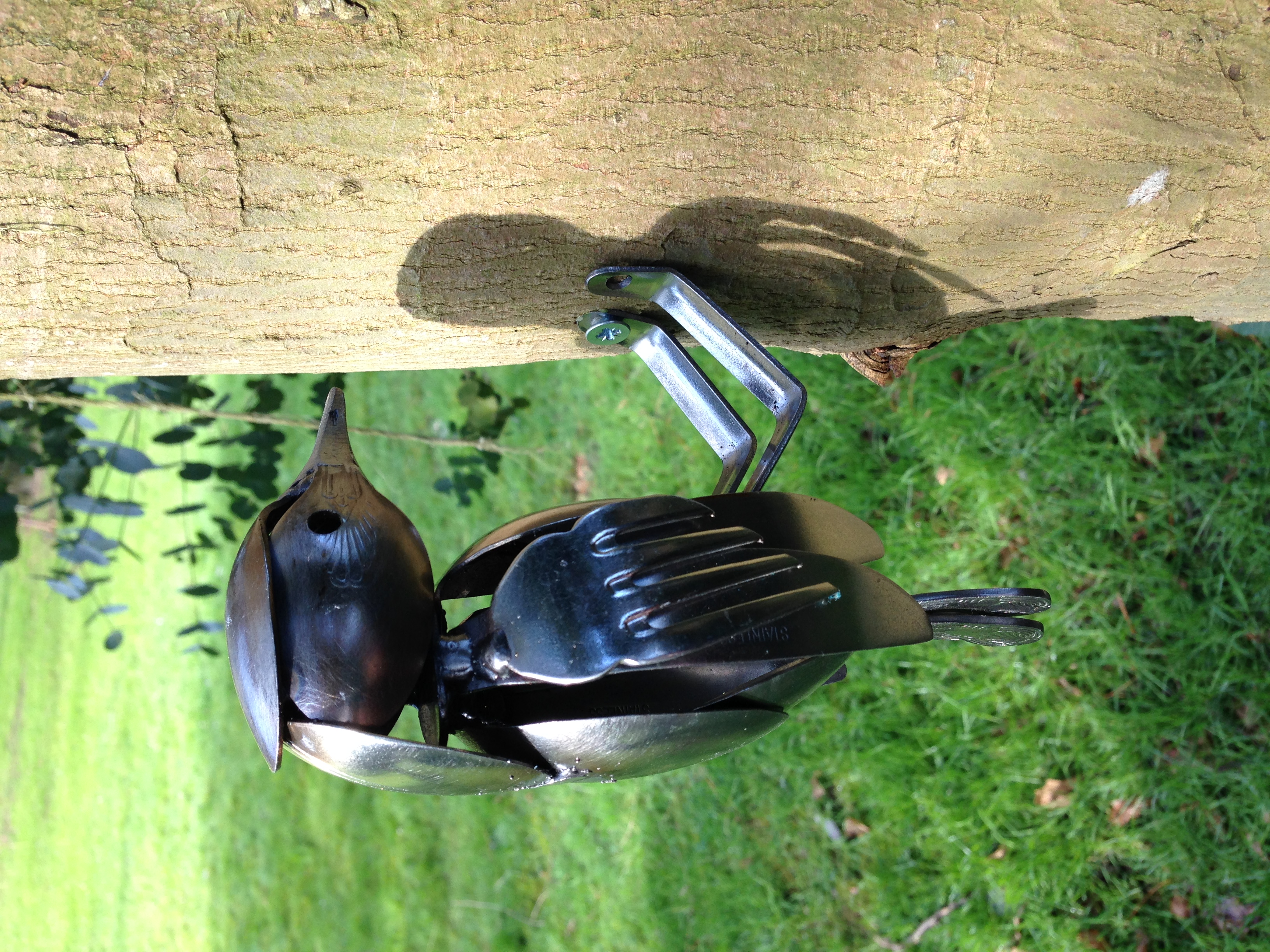 Cutlery Woodpecker