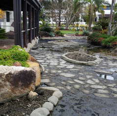 Commercial Pond Clean - Before