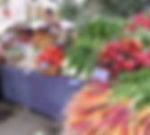 Fresh local produce at Saturday Farmers Market