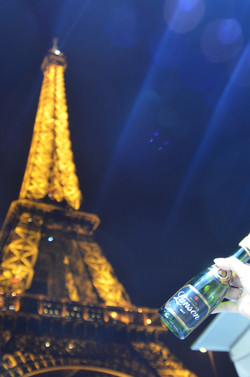 Eiffel Tower, Paris France 1493013