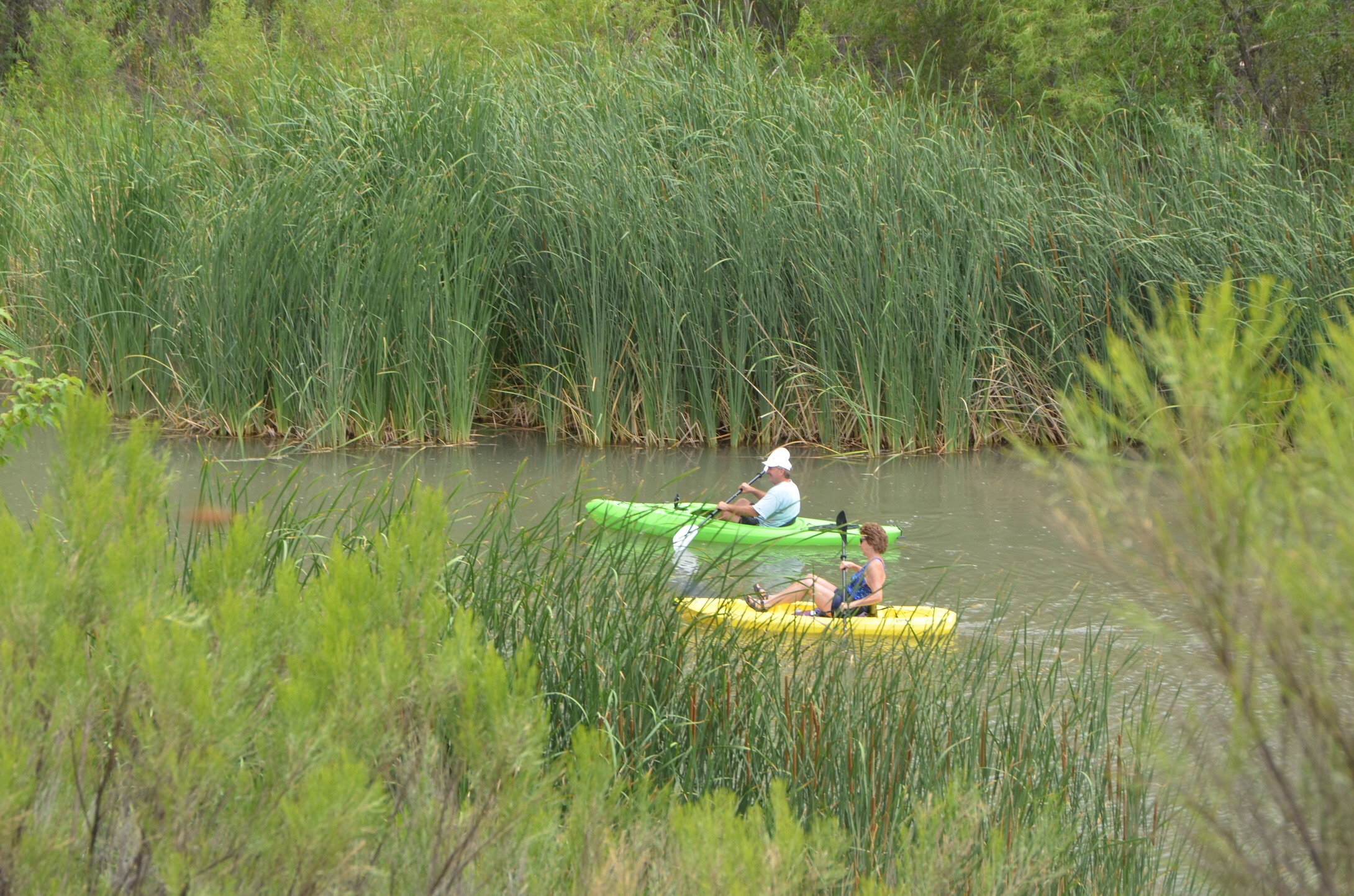 Kayaking Along the Verde River 1570070