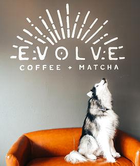 Evolve howling wolf.jpg