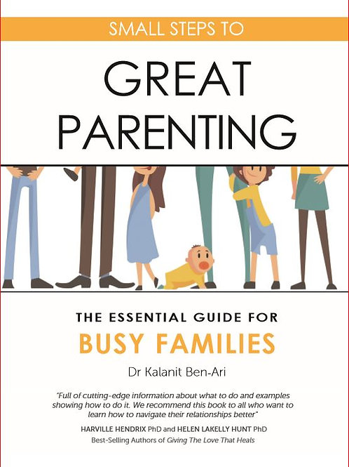 Small Steps to Great Parenting: Essential Busy Families (£9.99 + £1.99 p&p)