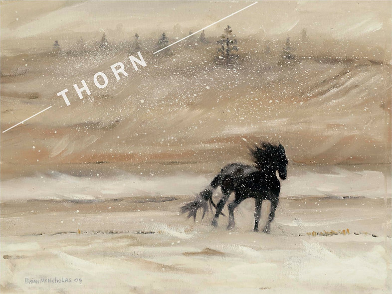 Horse In a Snow Storm by Brian McNicholas