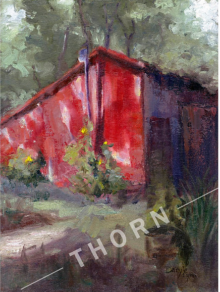 Red Shed by Daryle Lynn Cornelison