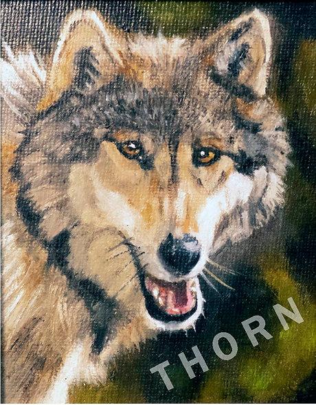 Wolf by Brian McNicholas