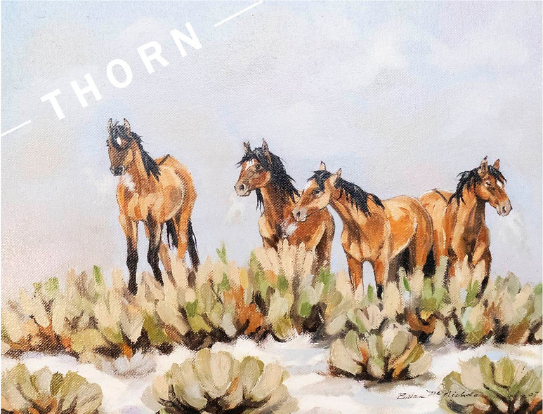 Four Mustangs At the Water Hole by Brian McNicholas