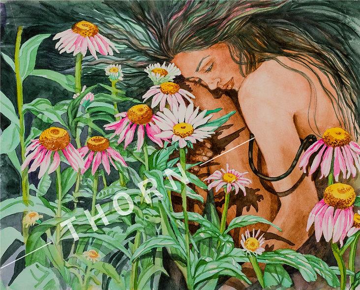 Echinaceas by Karen Thornberg