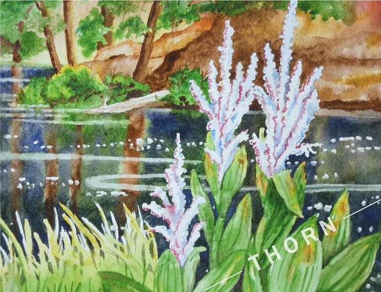 Deschutes River by Karen Thornberg