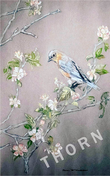 Bird On Branch by Brian McNicholas