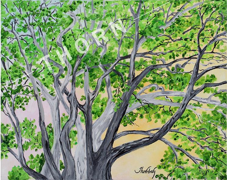 Whispering Tree by Karen Thornberg