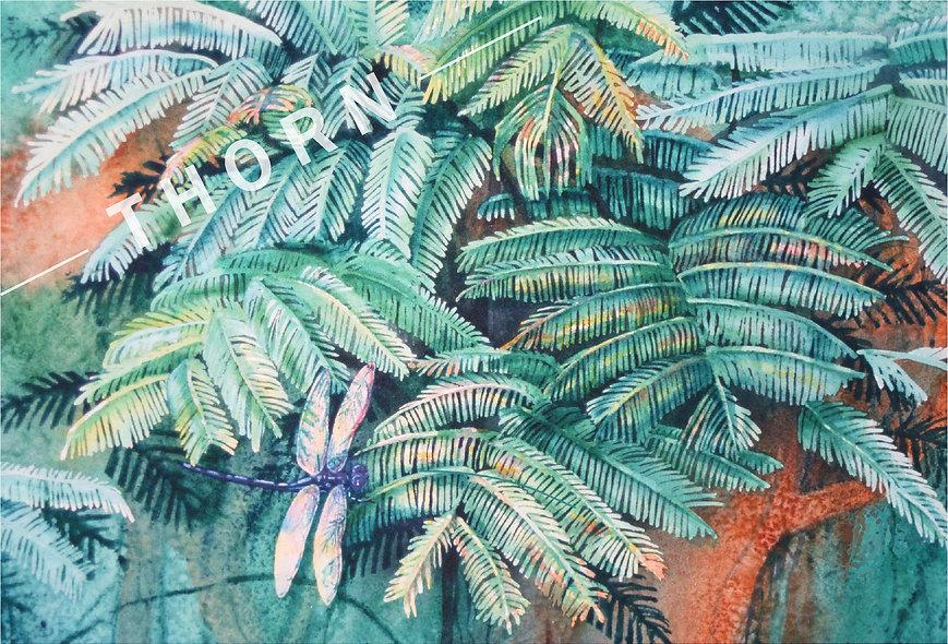Dragonfly In Ferns by Karen Thornberg