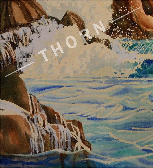 Ocean Rocks by Karen Thornberg