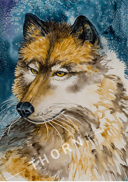 Alpha Wolf by Karen Thornberg