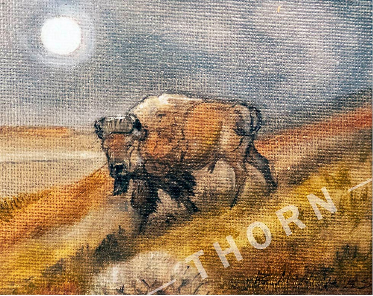 Bison and Moon by Brian McNicholas
