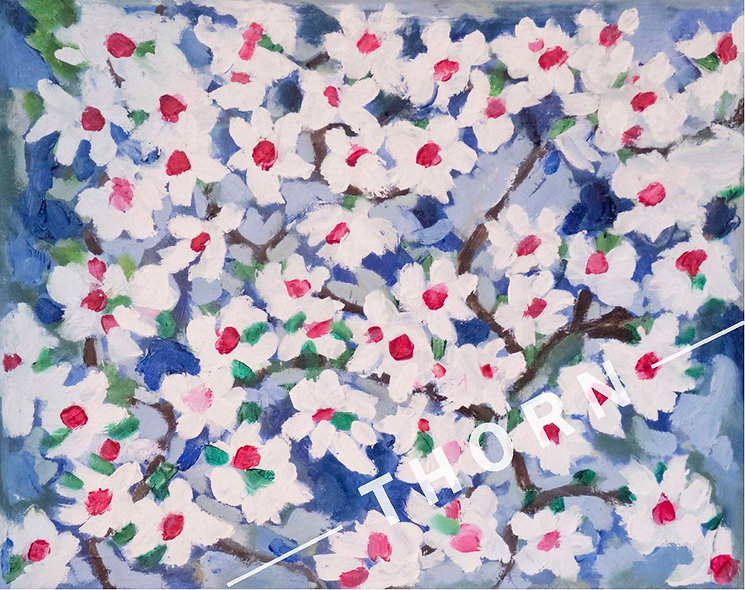 Cherry Blossoms by Brian McNicholas