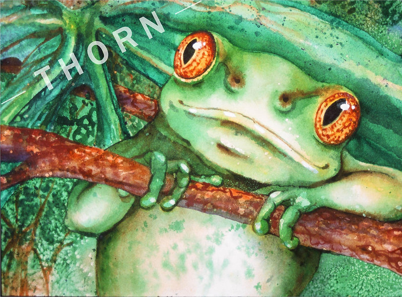Frog by Karen Thornberg