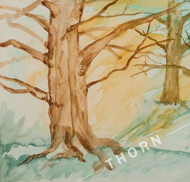 Big Tree by Karen Thornberg