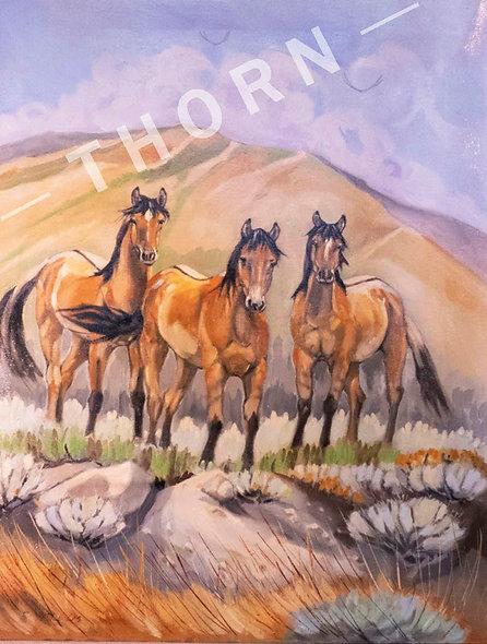 Niger Mustangs by Brian McNicholas