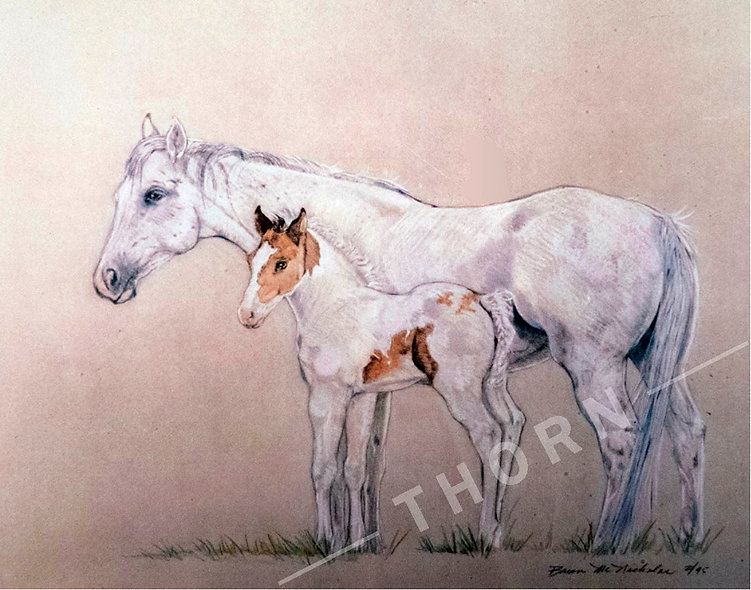Horses Large and Small by Brian McNicholas