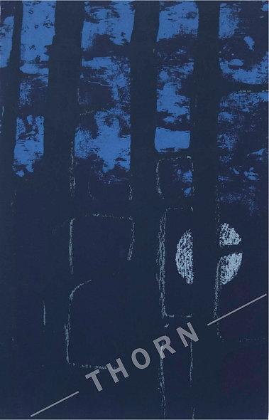 Nocturn by Tom Byrne