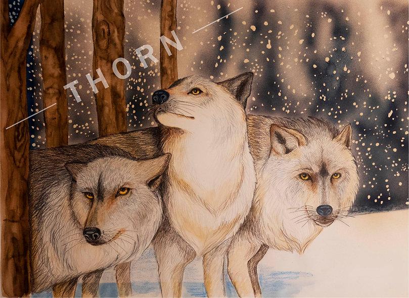 She Wolf by Karen Thornberg