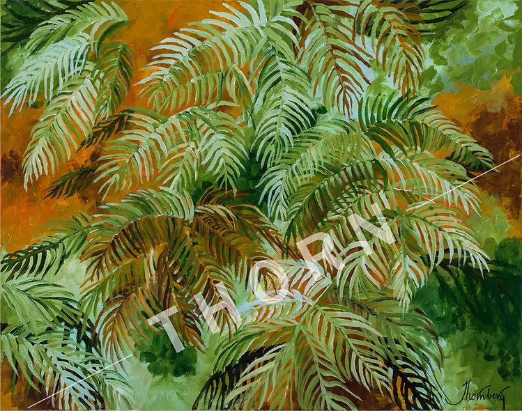 Ferns by Karen Thornberg