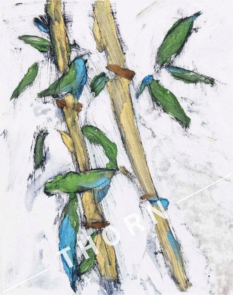 Bamboo by Tom Byrne