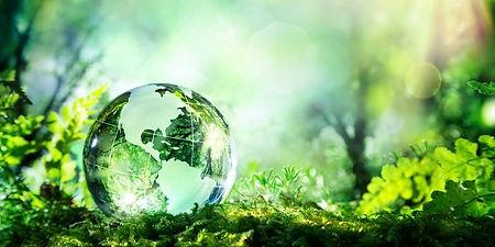 sviluppo-sostenibile-800x400 (1) (1).jpg