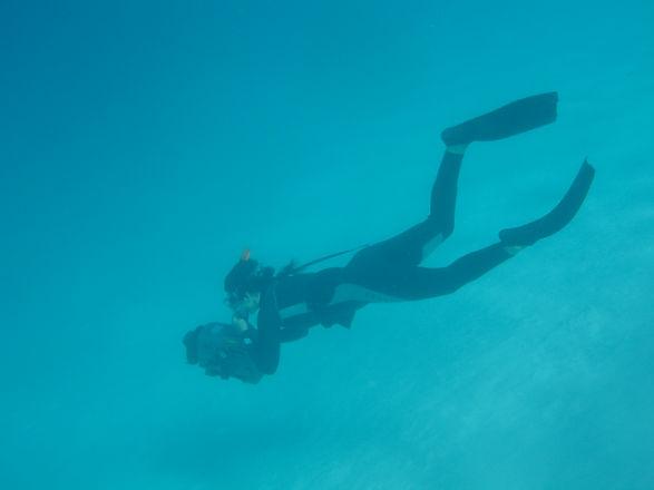Belinda Braithwaite filming underwater in French Polynesia