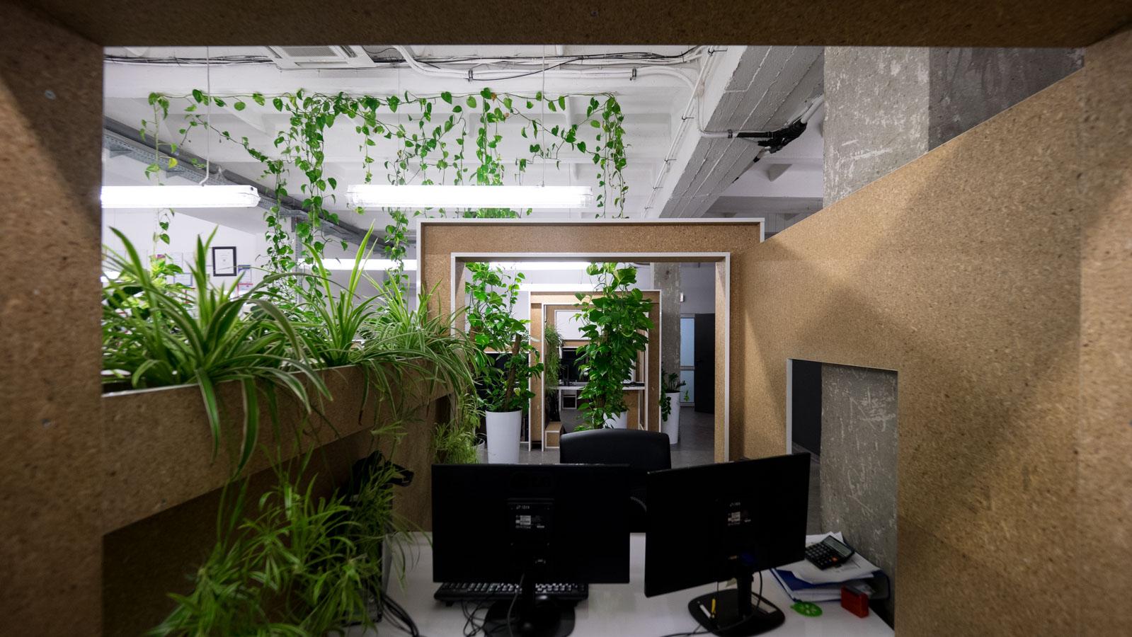 MN Morele_net office kamil konarski anna tasarz konarskitasarz_pl-20