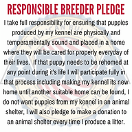 Responsible-Breeder-Pledge-300x300.png