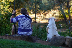 A Man & His Bulldog