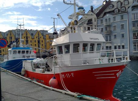 It's 2019, the coastal fleet need to renew.
