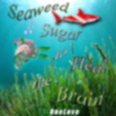 TBI-One-Love-Seaweed-Sugar-Heal-Brain