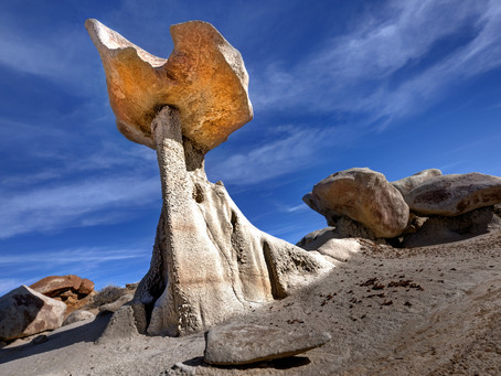 Wild Bisti and Where to Find It