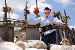 Transylvania, Romania - Shepherd