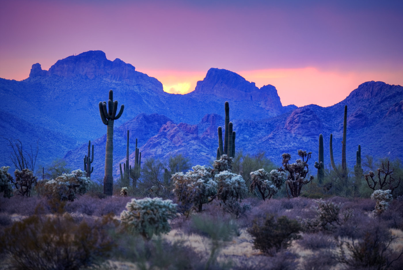 Phoenix All Day Photo Tour