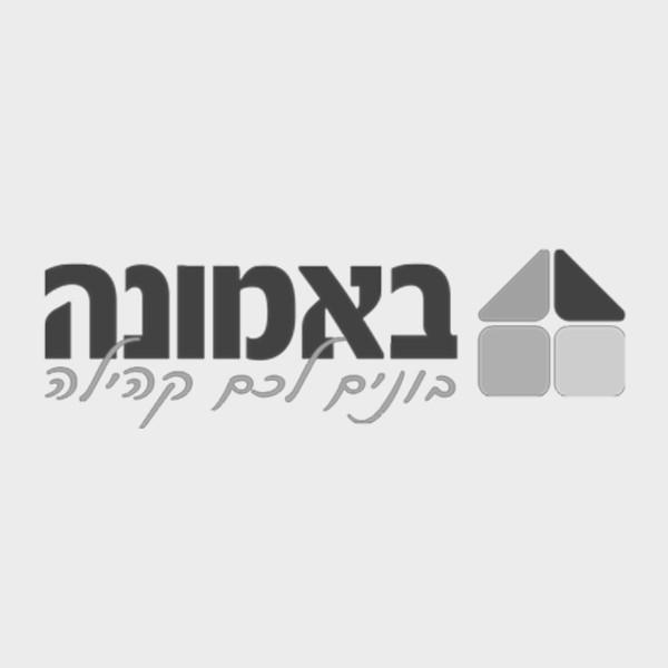 לוגו חברת באמונה
