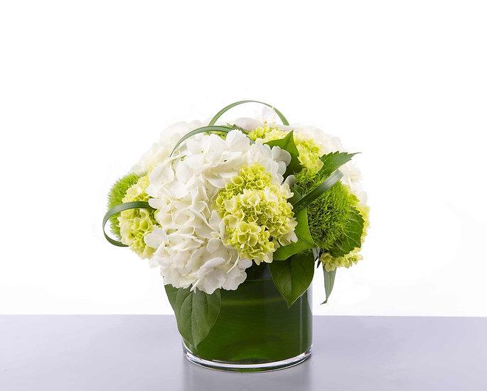 White & Mini Green Hydrangeas