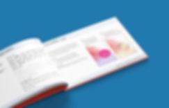 KY Brand Guidelines_3.jpg