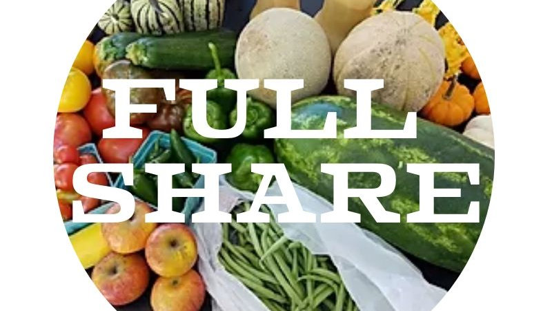Quincy Full CSA Share