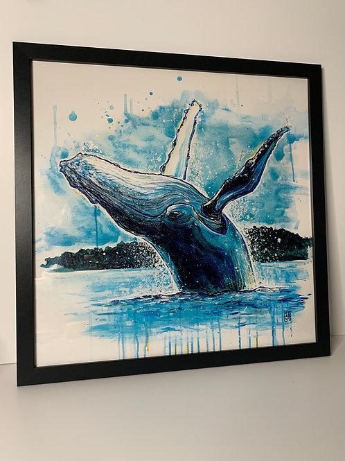 Large Framed Whale Print