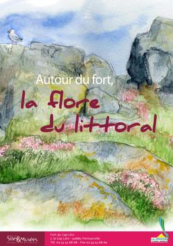 Flore du littoral