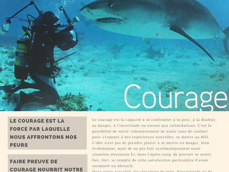 Force N°6 : LE COURAGE