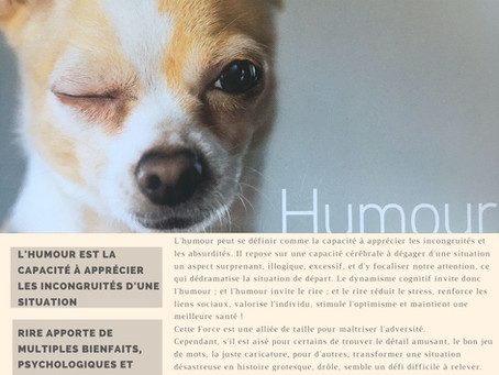 Force N°19 : L'HUMOUR